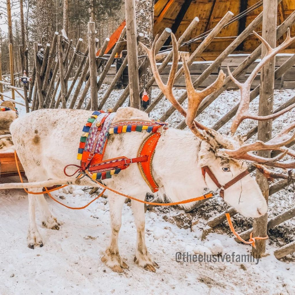reindeer ride santa claus village short best for family